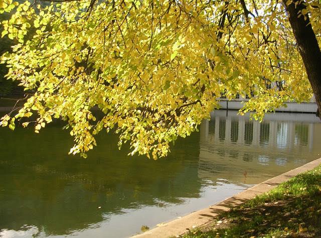 Москва, Чистые пруды, золотая осень