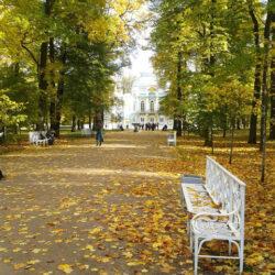 Золотой осенью в Царском селе