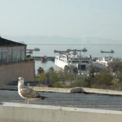 Воскресный Стамбул