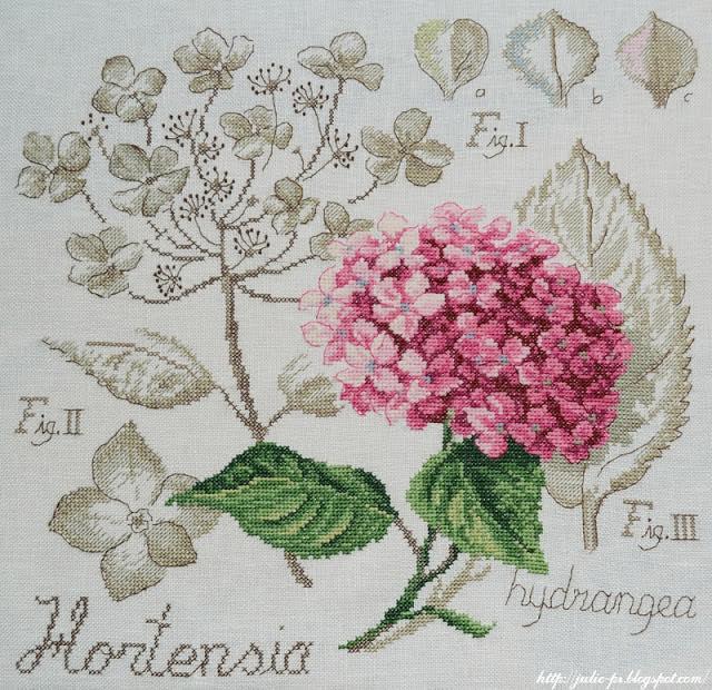 DFEA, Les brodeuses parisiennes, étude botanique, hortensia, Véronique Enginger, ботаника, гортензия, ботанический этюд, вышивка
