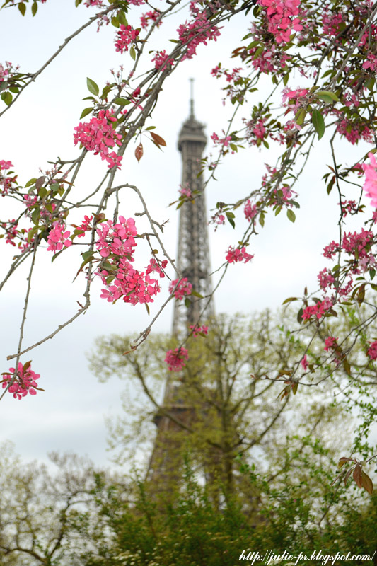 Paris en fleur, Париж весной, Париж в цветах, весенний Париж, Эйфелева башня, Tour Eiffel