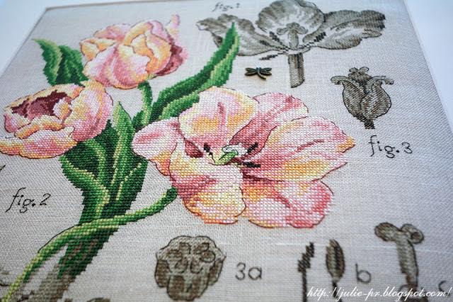 les brodeuses parisiennes, парижские вышивальщицы, атмосфера творчества, veronique enginger, ботаника тюльпан, tulipe apricote foxx