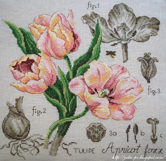 les brodeuses parisiennes, парижские вышивальщицы, атмосфера творчества, veronique enginger, ботаника тюльпан, этюд apricot foxx