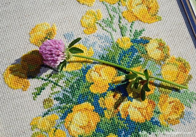 риолис 1515 купавки, вышивка крестом