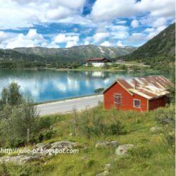 Норвегия из окна поезда
