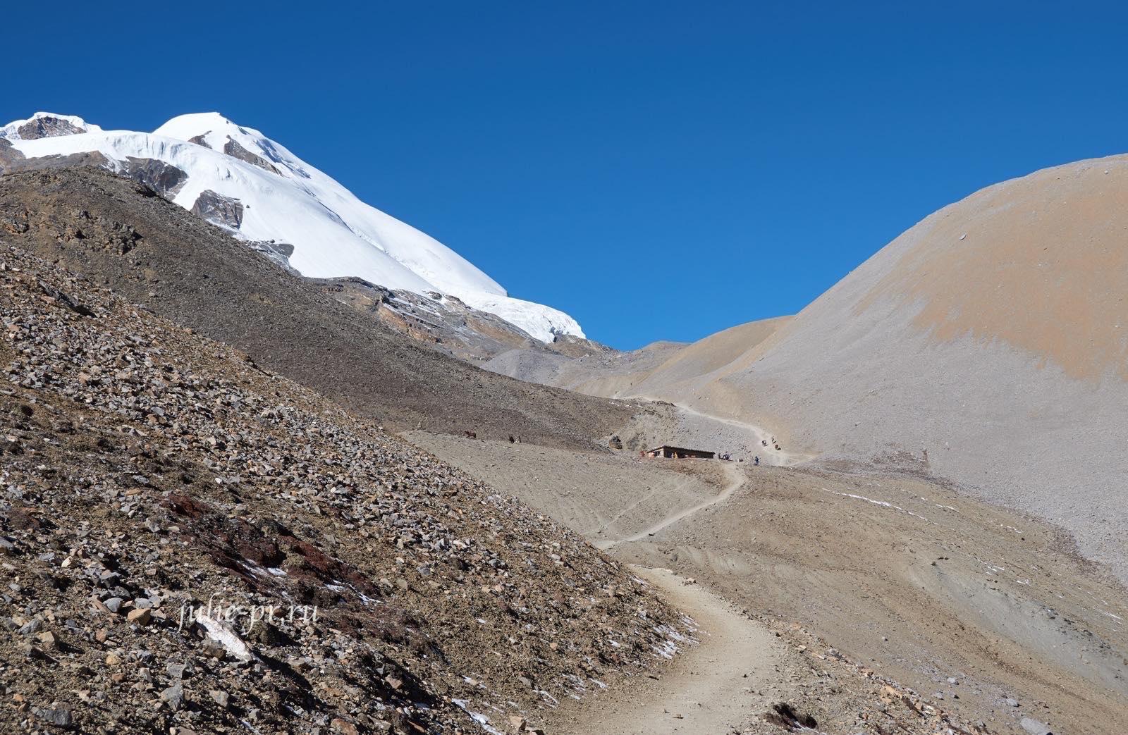 Непал, Трек вокруг Аннапурны, тропа к перевалу Торонг-Ла, чайный домик