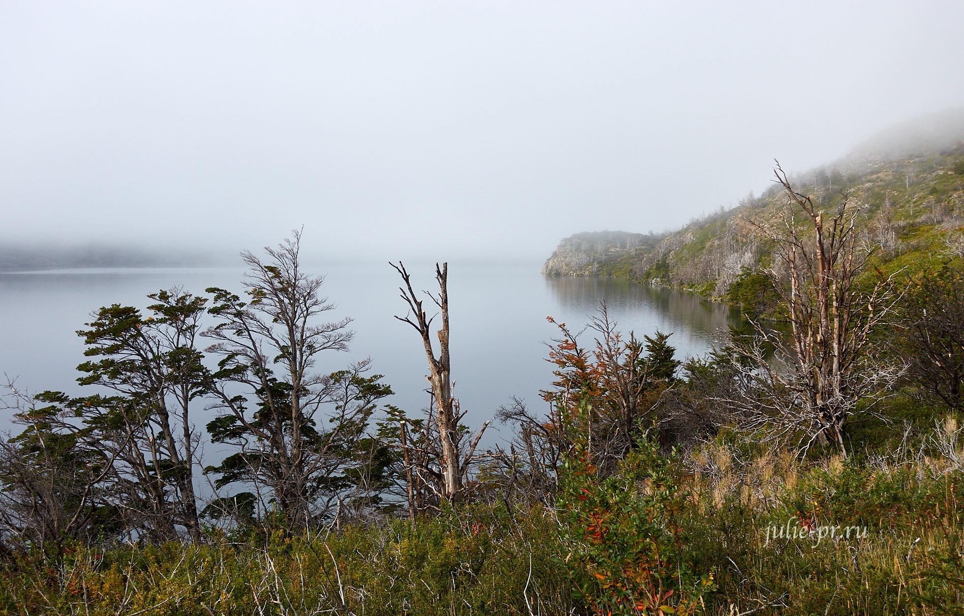 Чили, Патагония, Торрес-дель-Пайне, озеро Skottsberg