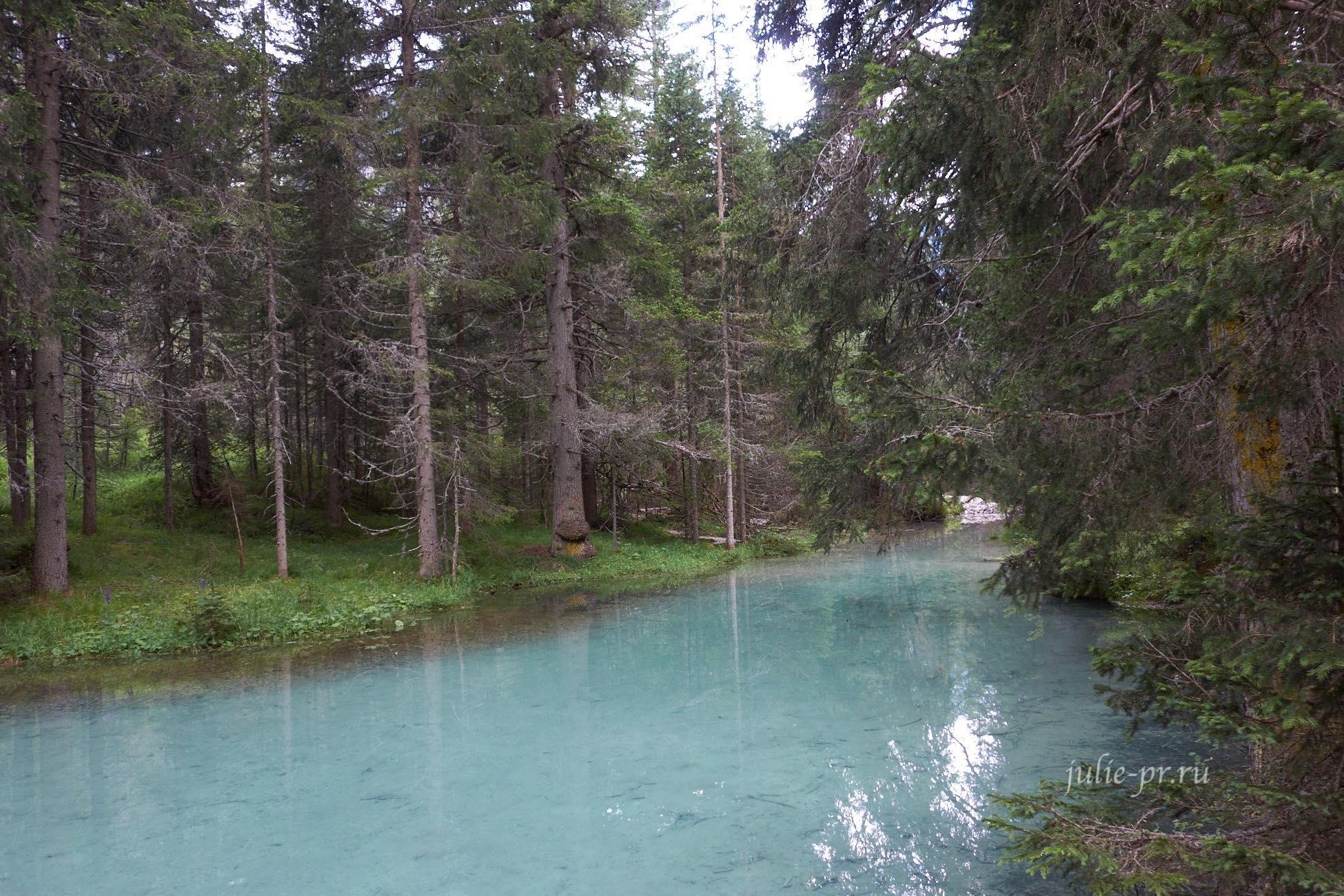 Италия, Альпы, Доломиты, ручей в лесу