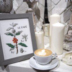 Кофейная ботаника