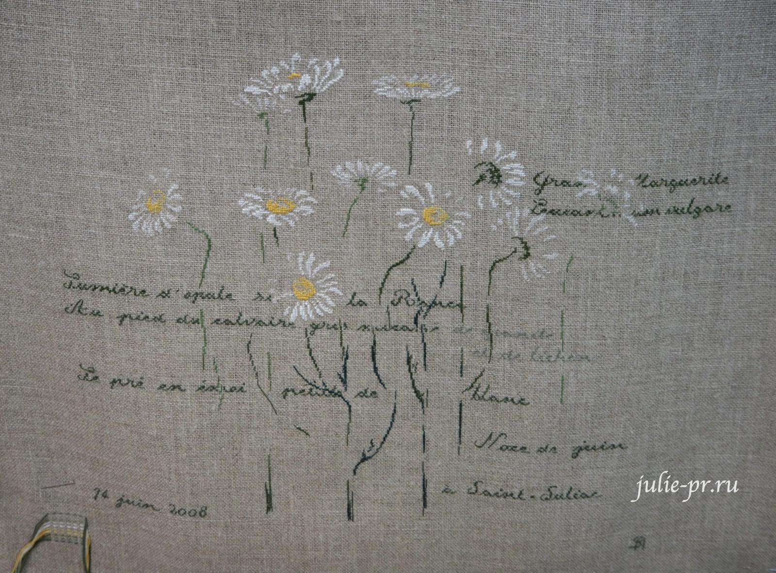 MTSA, Marguerites, Маргаритки, вышивка крестом