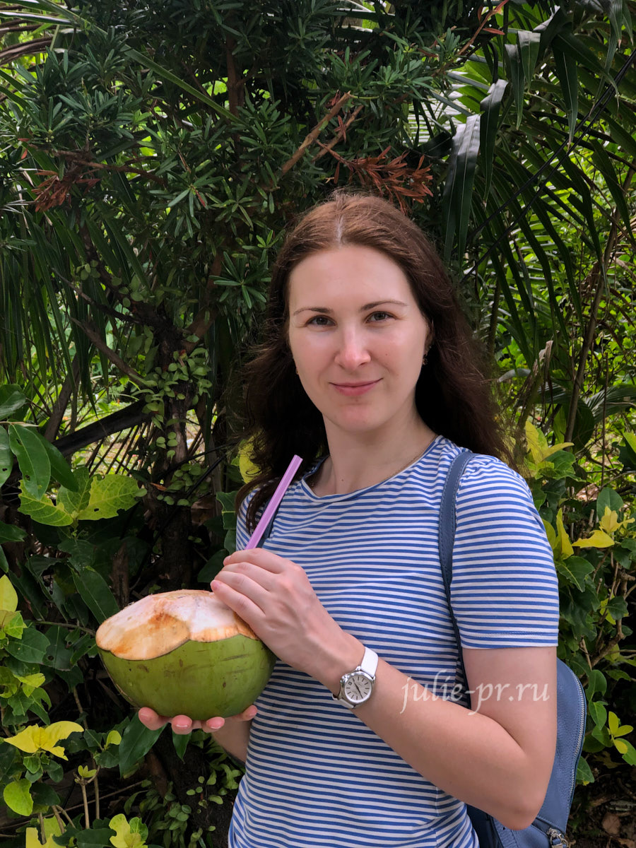 Филиппины, острова Батанес, кокос