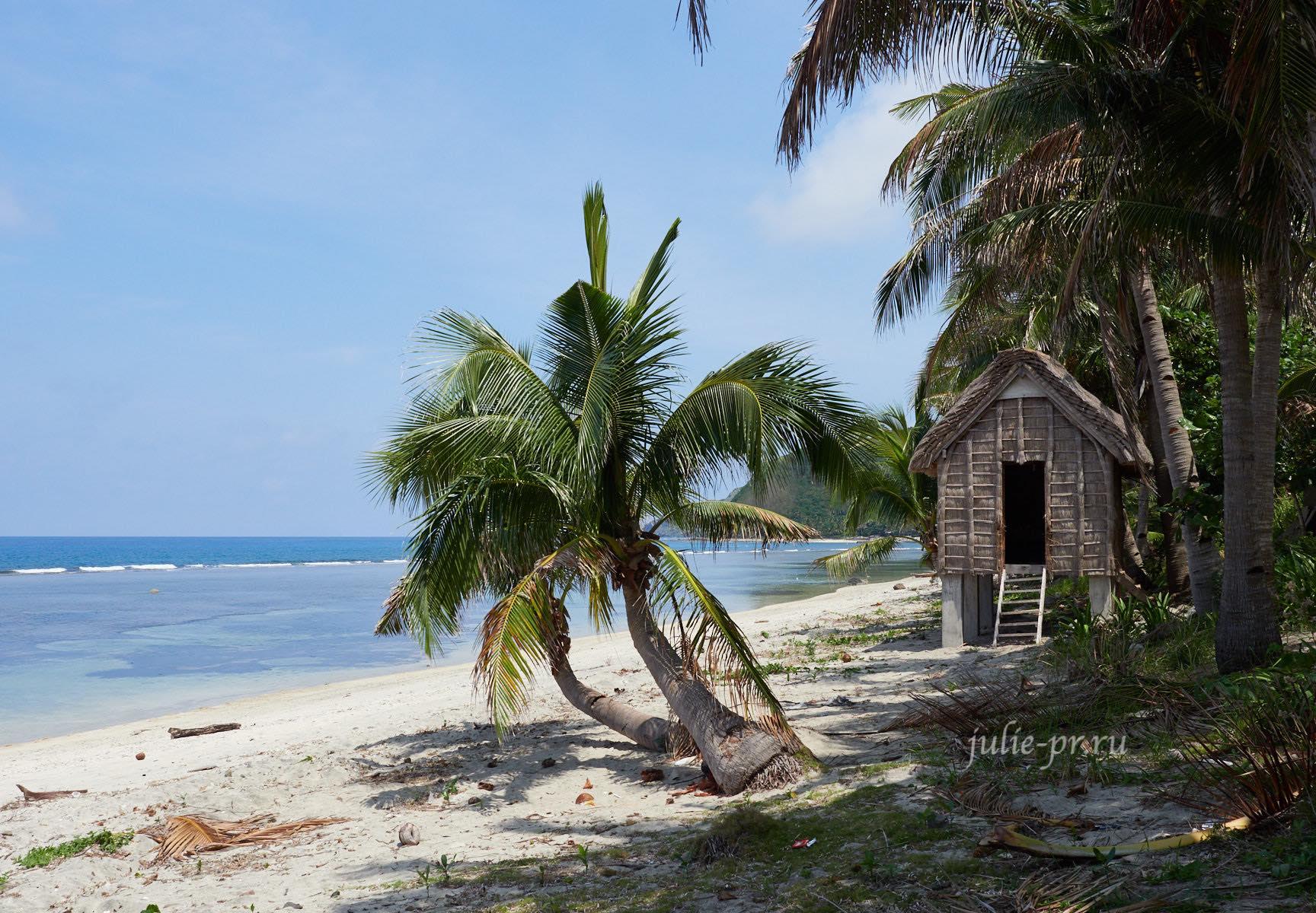Филиппины, острова Батанес, пальмы на берегу
