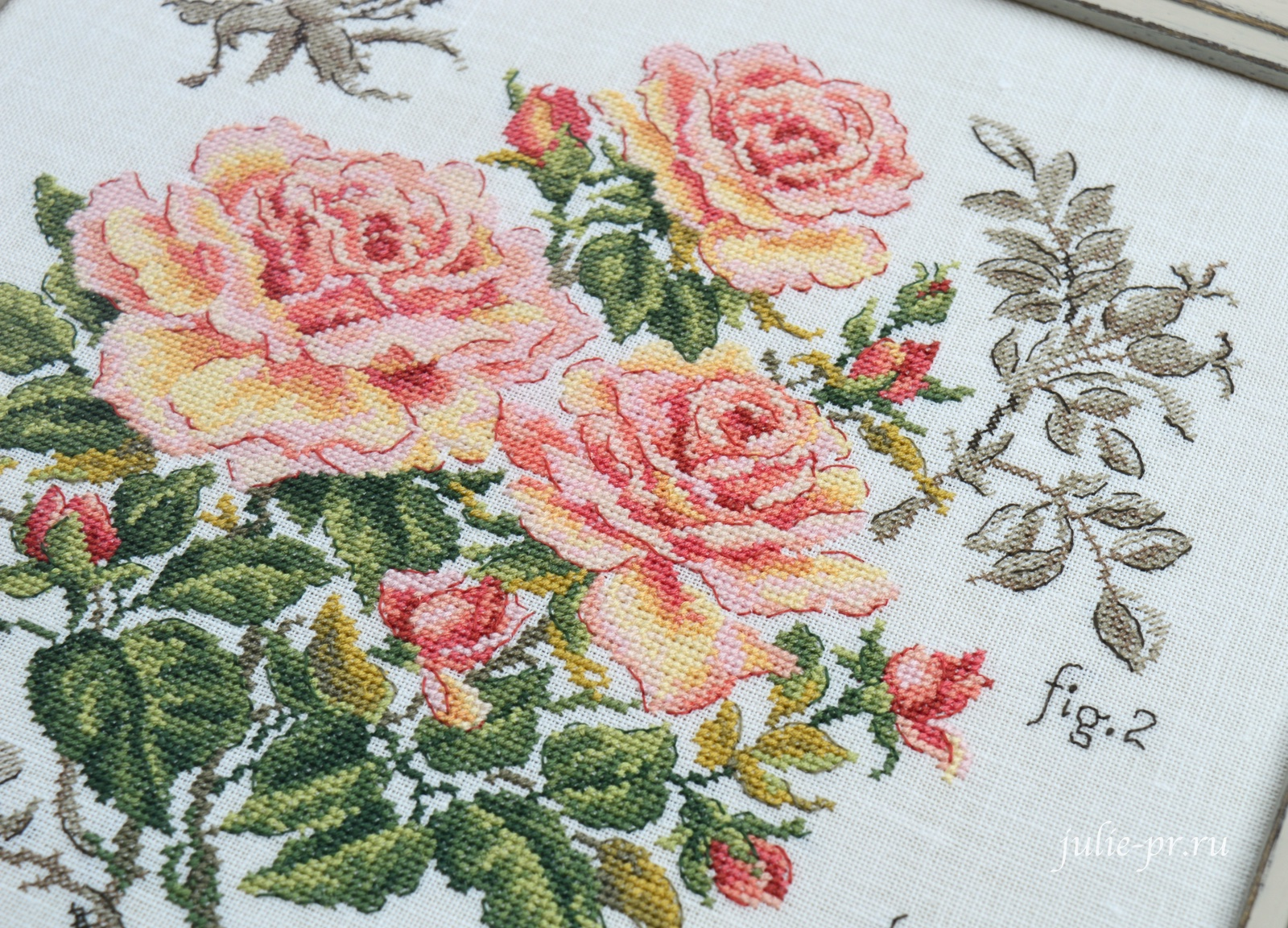ботаника рose just joey, Les brodeuses parisiennes, парижские вышивальщицы, Veronique Enginger, вышивка крестом