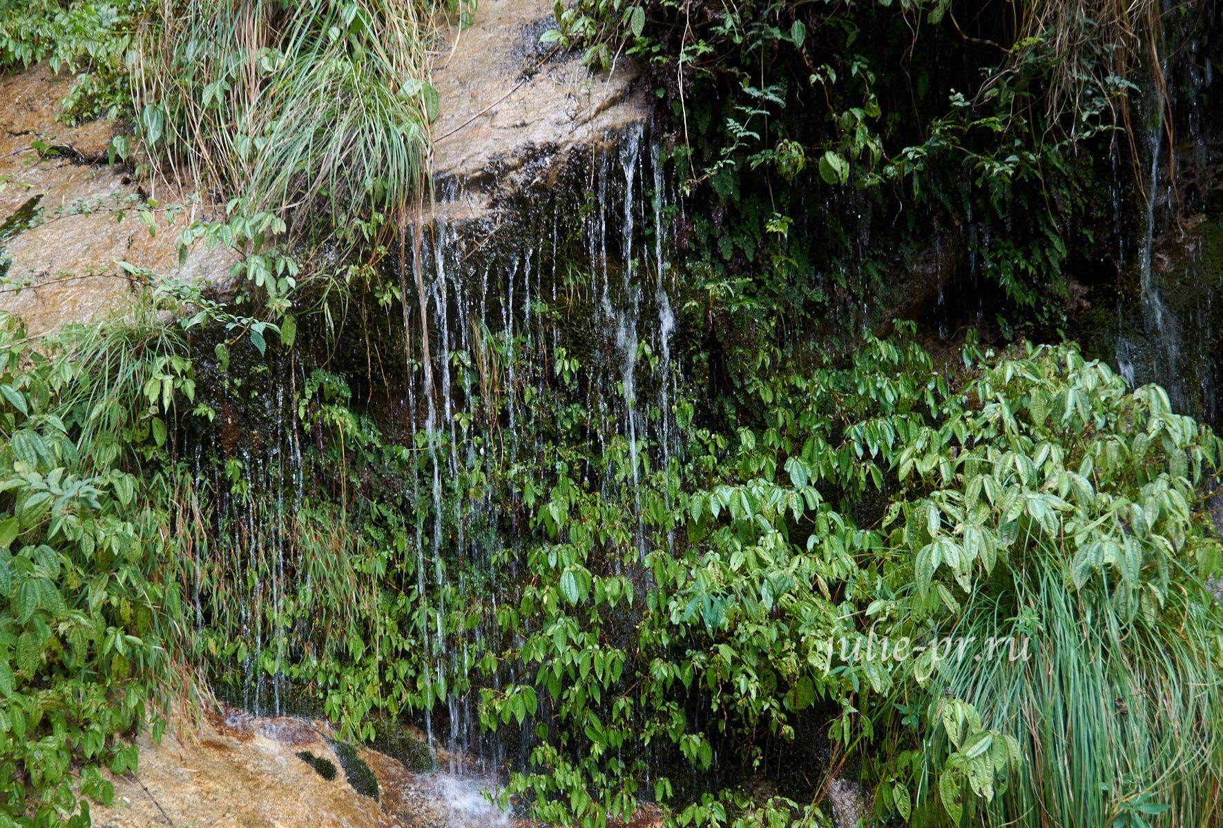Непал, Трек вокруг Аннапурны, вода и растительность