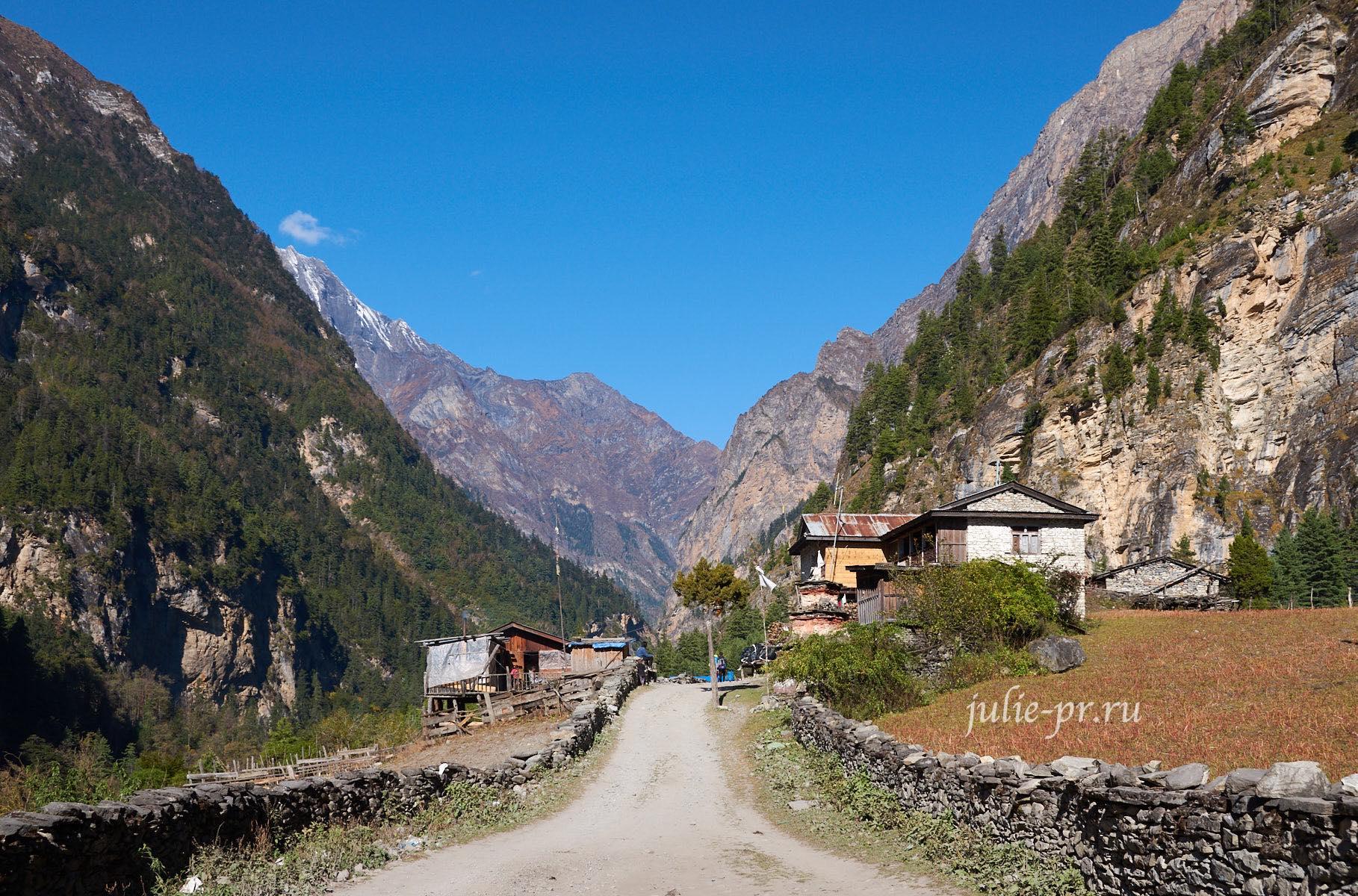 Непал, Трек вокруг Аннапурны, Thaleku