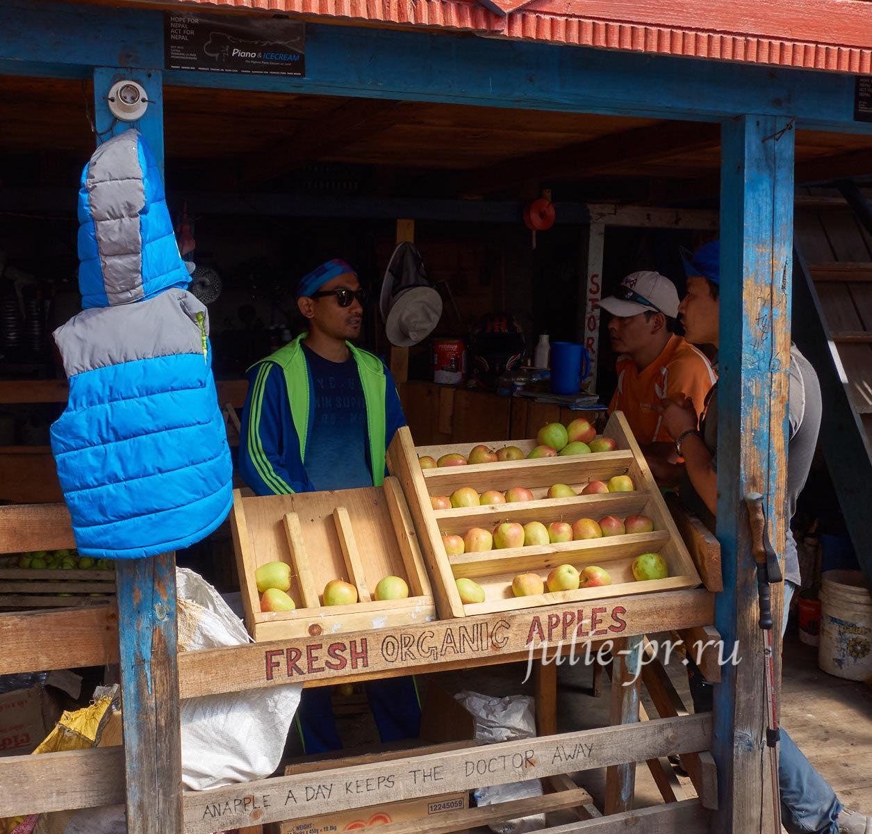 Непал, Трек вокруг Аннапурны, Bhratang, торговля