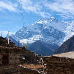 Непал. Вокруг Аннапурны: 9. Писанг – Нгавал