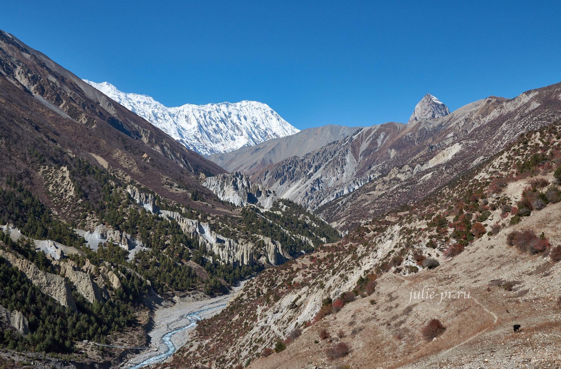 Непал. Путь к Тиличо