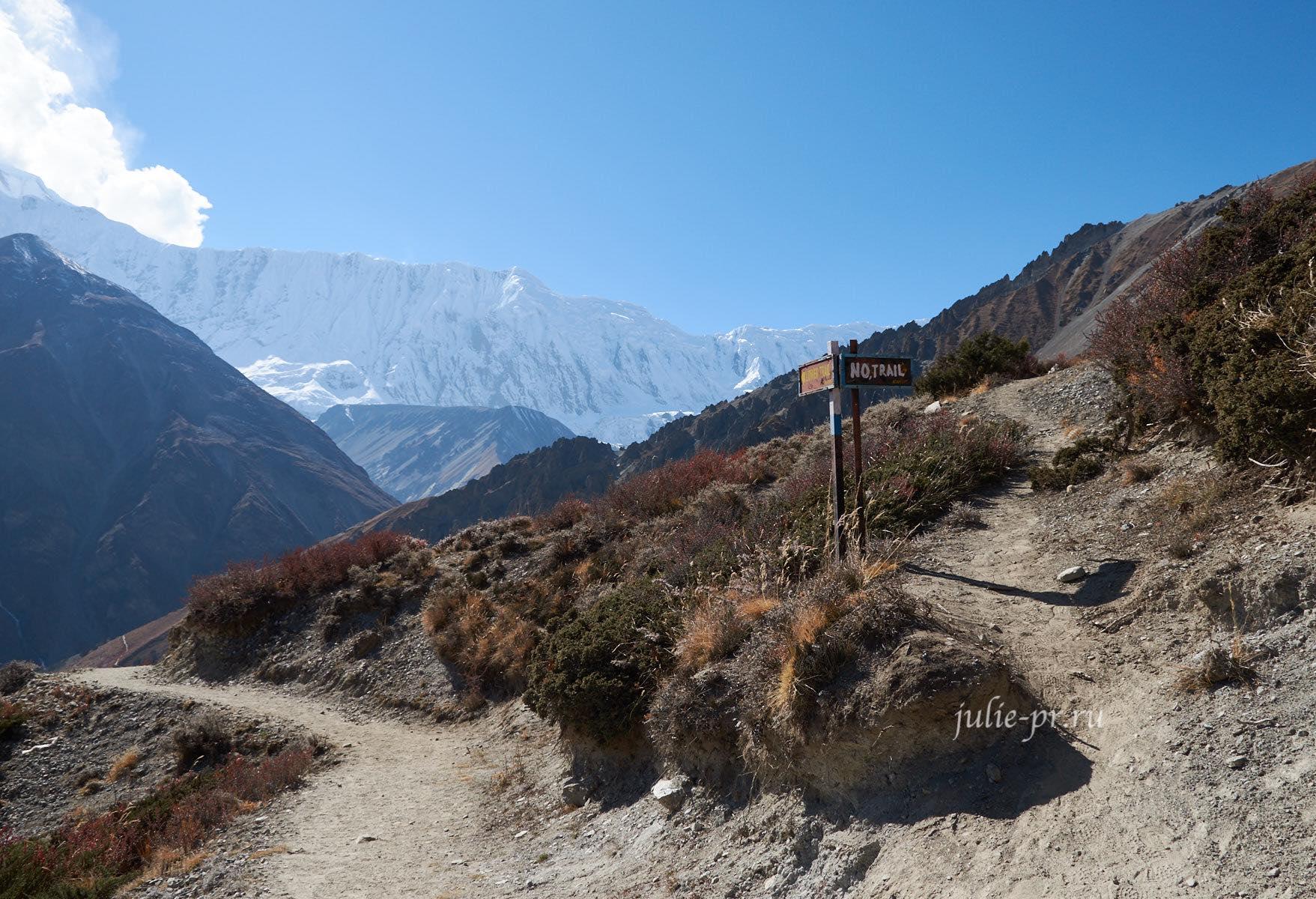 Непал. Развилка Верней и Нижней тропы на Тиличо