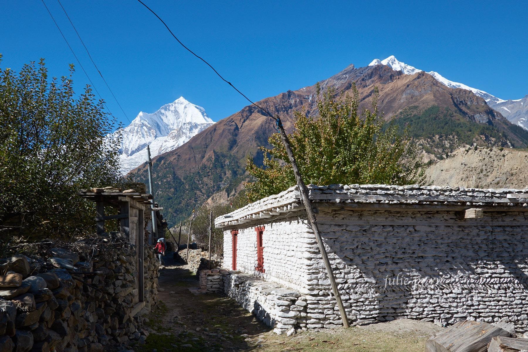 Непал, Трек вокруг Аннапурны, Деревня Чокхопани