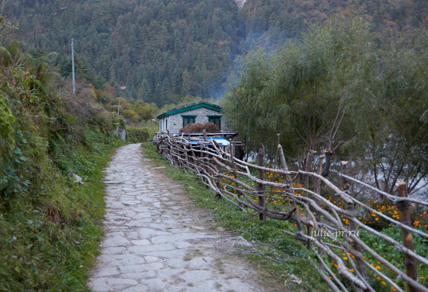 Непал, Трек вокруг Аннапурны, Деревня Дхампу