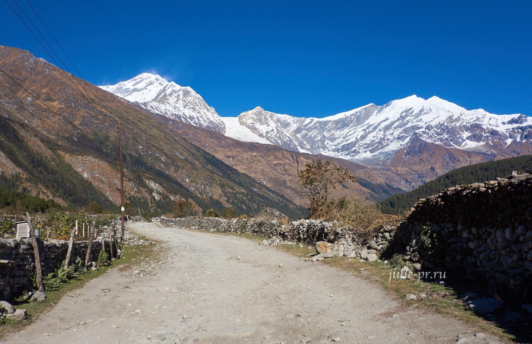Непал, Трек вокруг Аннапурны, Калопани