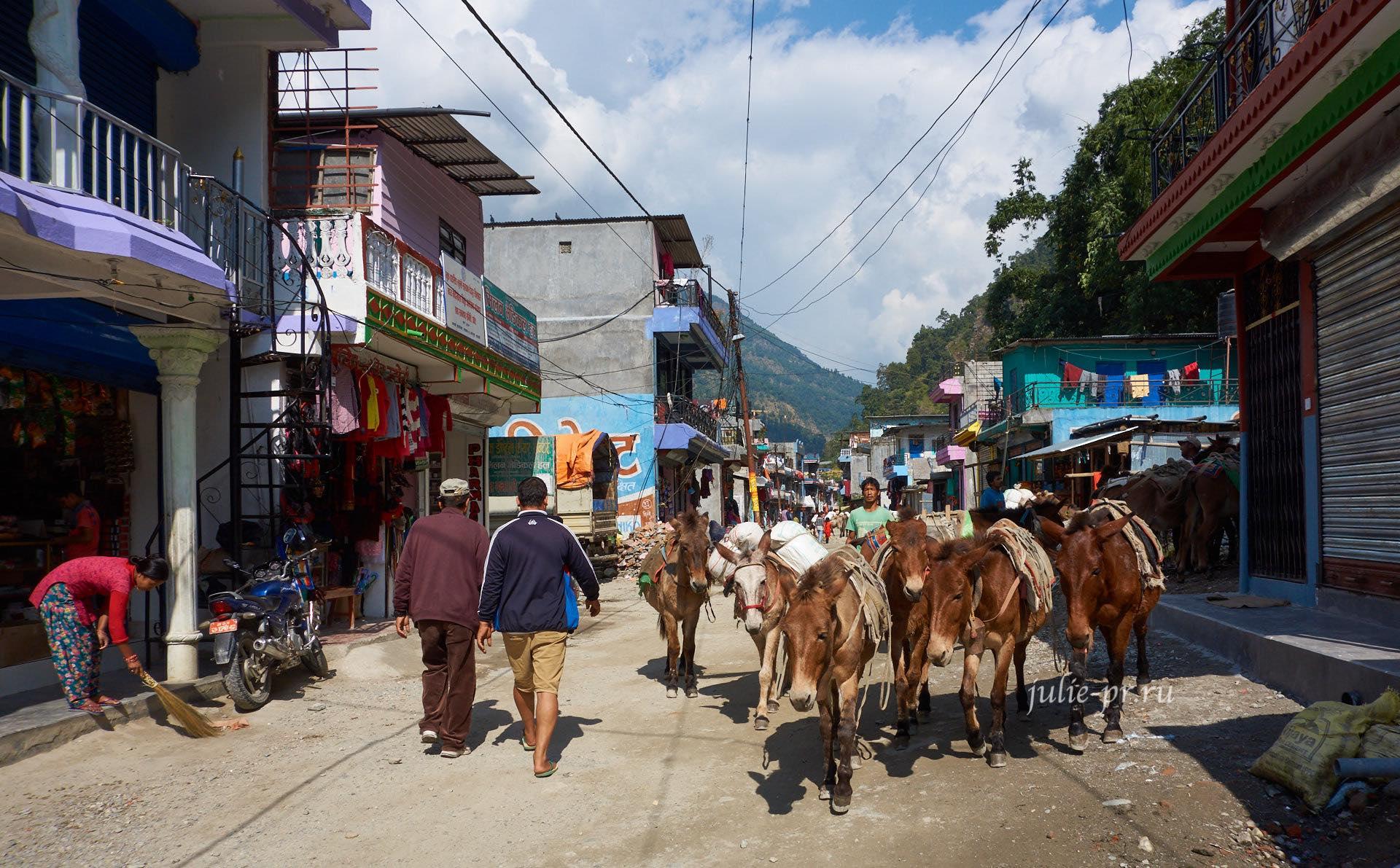 Непал, Пун-Хилл трек, Деревня Наяпул