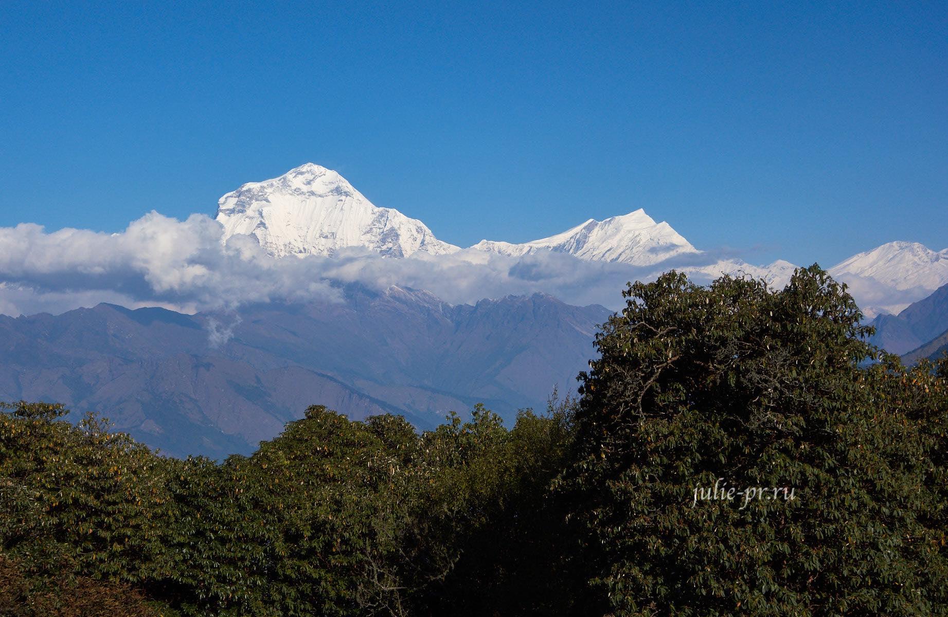 Непал, Пун-Хилл трек, Дхаулагири