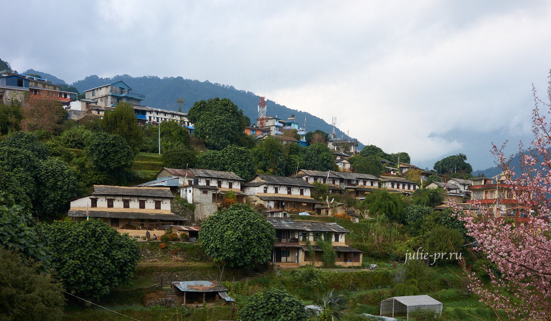 Непал, Пун-Хилл трек, Деревня Гхандрук