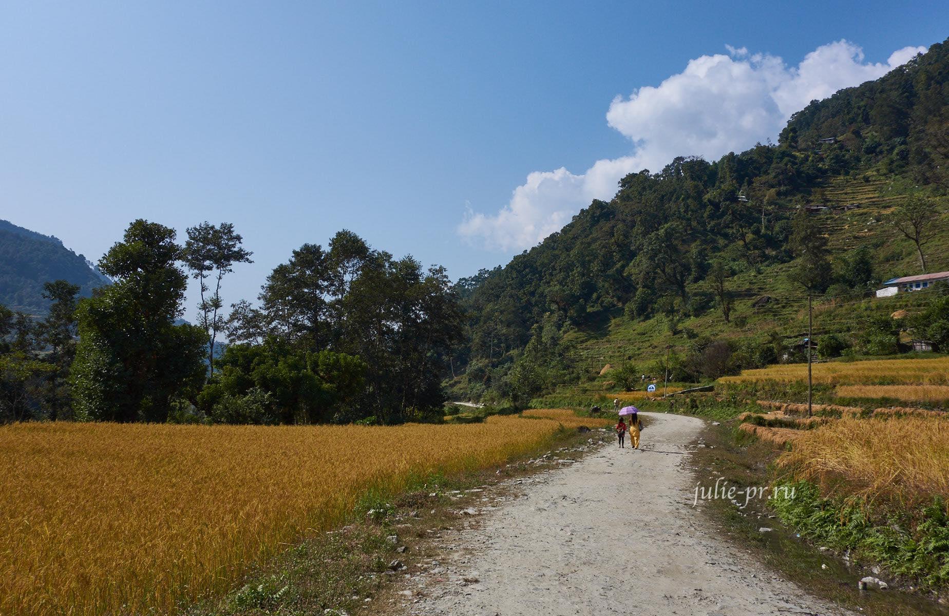 Непал, Пун-Хилл трек
