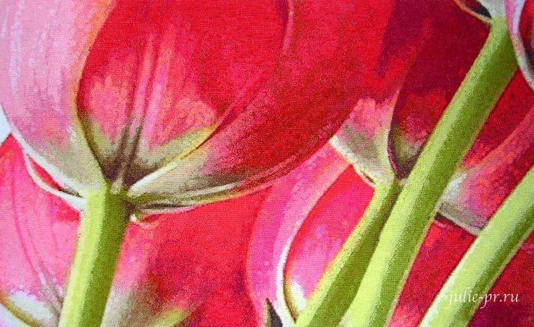 Пять тюльпанов