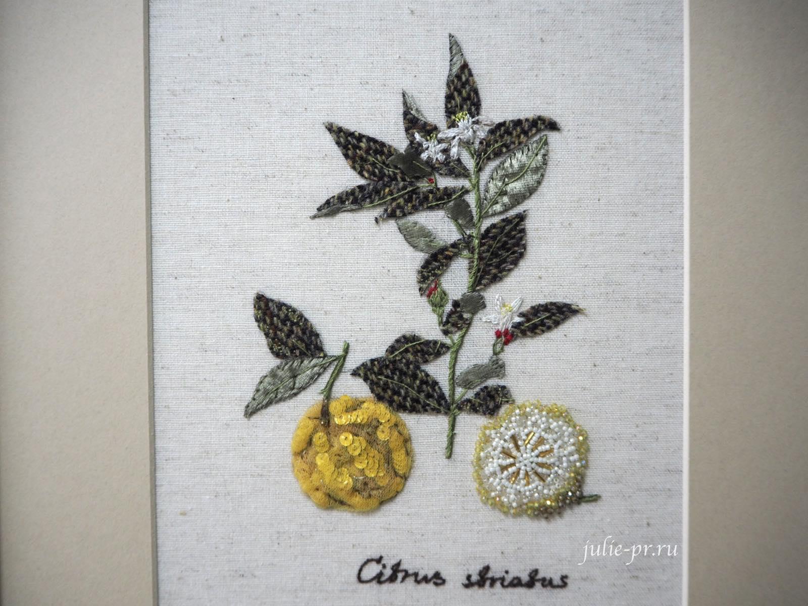 Лимон, Катерина Мороз, кутюрная вышивка