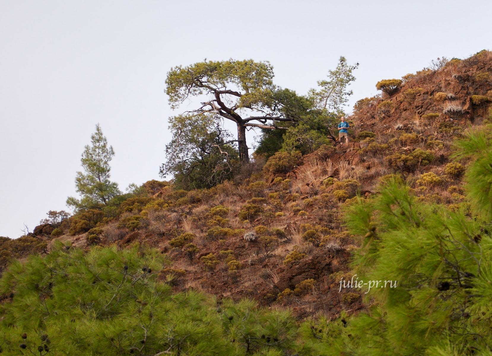 Турция, Ликийская тропа, Турист на холме