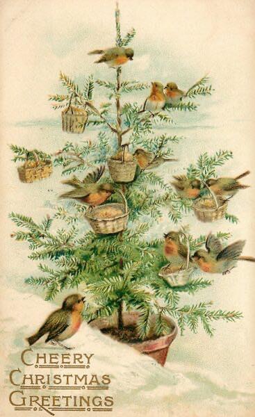 Открытка 1902 года The Birds' Christmas Tree
