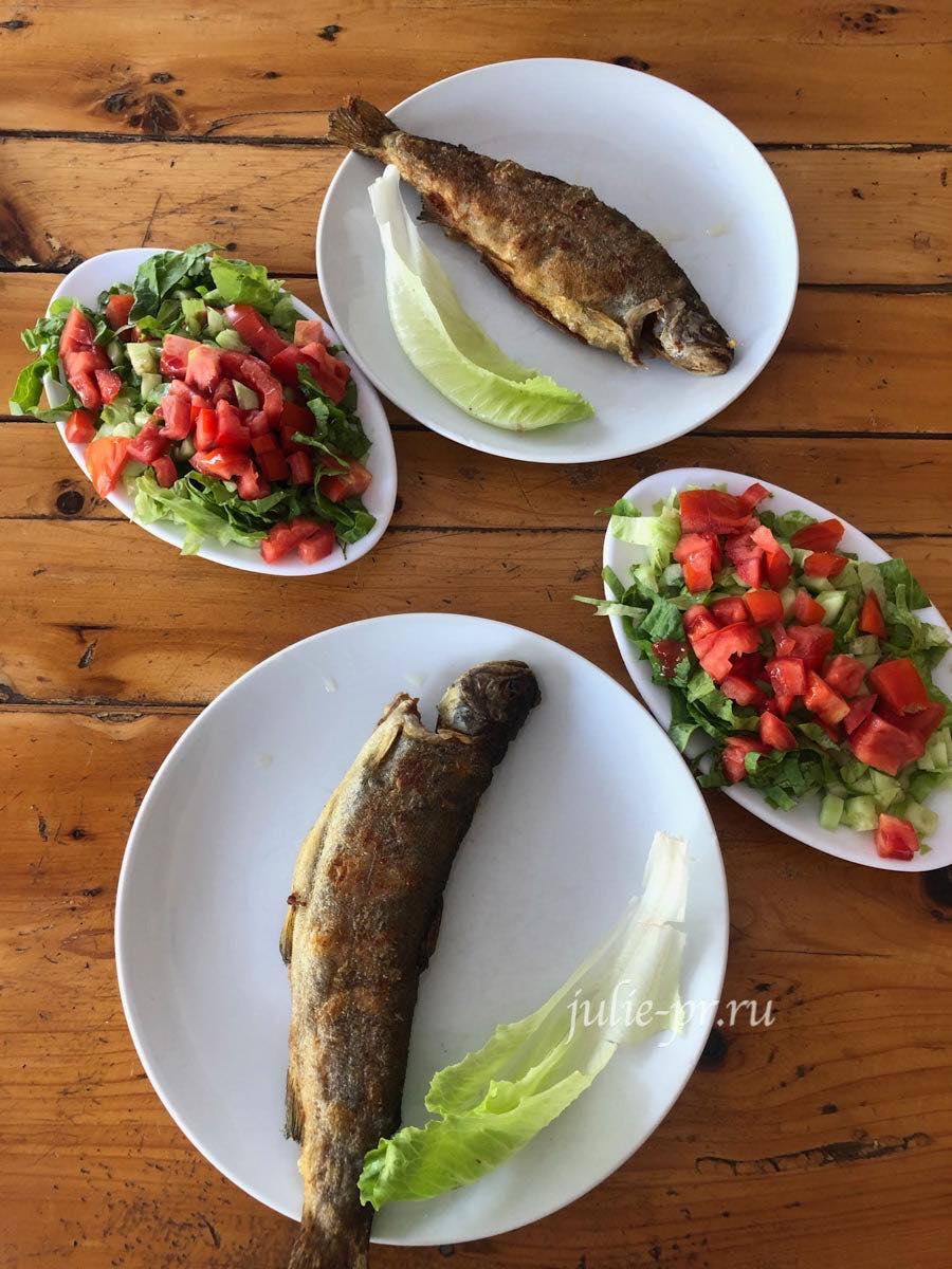 Турция, Ликийская тропа, Форель в ресторане Гедельме
