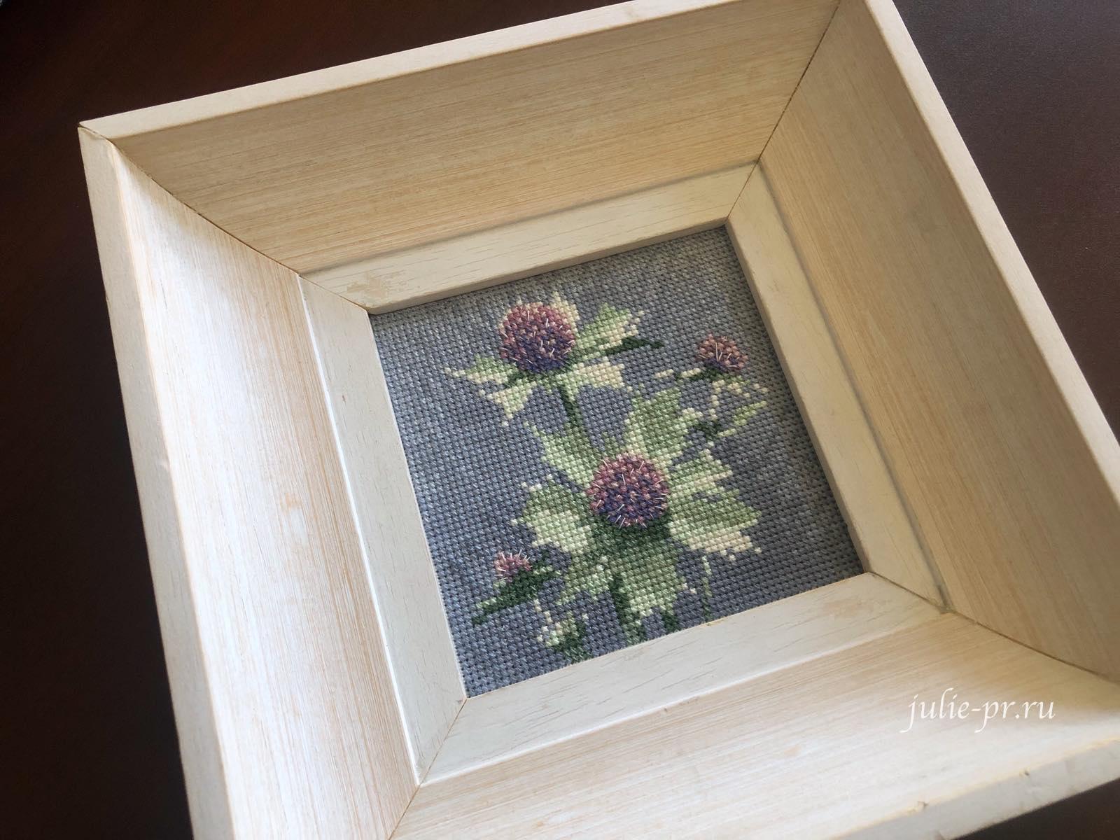 Mini Sea Holly, Синеголовик приморский, чертополох, вышивка крестом, Heritage, John Clayton, выставка Грани Джона Клейтона